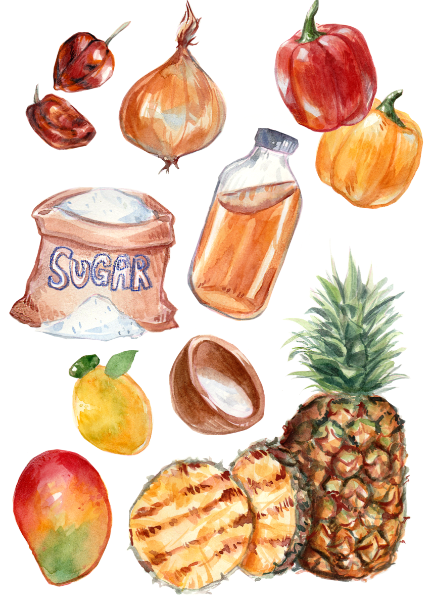 Watercolor food illustration of ingredients for pineapple habanero sauce
