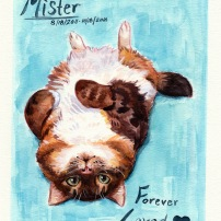 fluffy watercolor cat painting pet portrait memorial commission