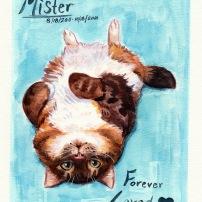 fluffy watercolor cat painting pet portrait memorial commission