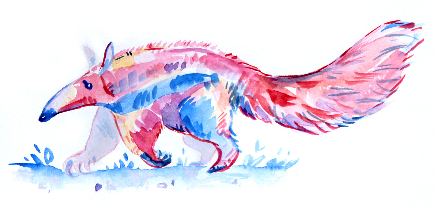 pink yellow blue colorful watercolor anteater animal illustration