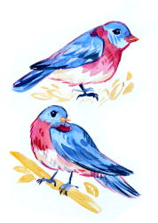cute pink yellow blue watercolor bird painting wildlife illustration