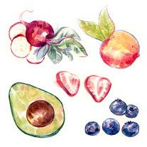 colorful stylized watercolor illustration fruits vegetables