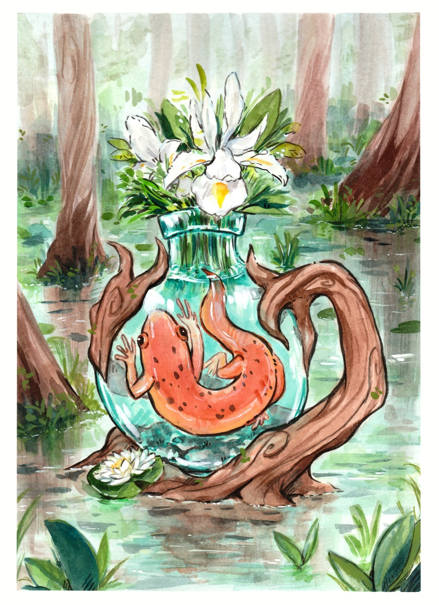 watercolor and ink illustration of a bottled salamander in a lush swamp