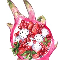 Watercolor illustration of a dragon fruit bowl filled with pomegranates and strawberries.