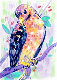 Mixed media stylized illustration of a blue and yellow hawk on a branch