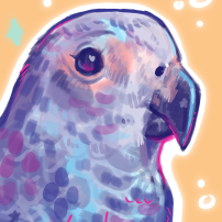 digital portrait painting of a pet parrot