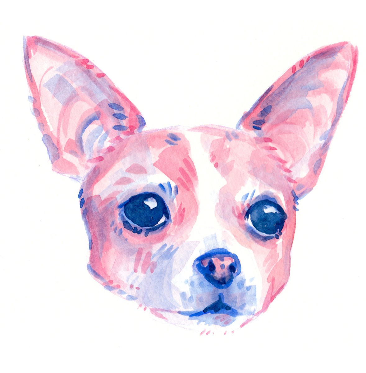 cute dog portrait painted with pink watercolor