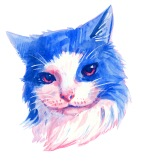 watercolor pink and blue portrait of a pet cat