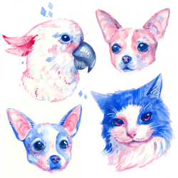pink and blue watercolor pet portraits of cat, dogs, and bird.