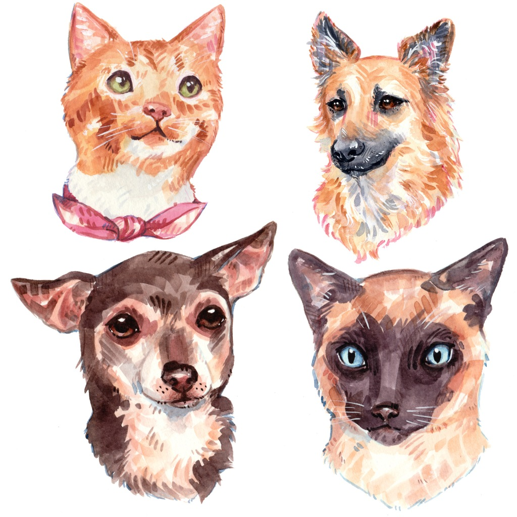 watercolor pet portrait collage of 4 animals