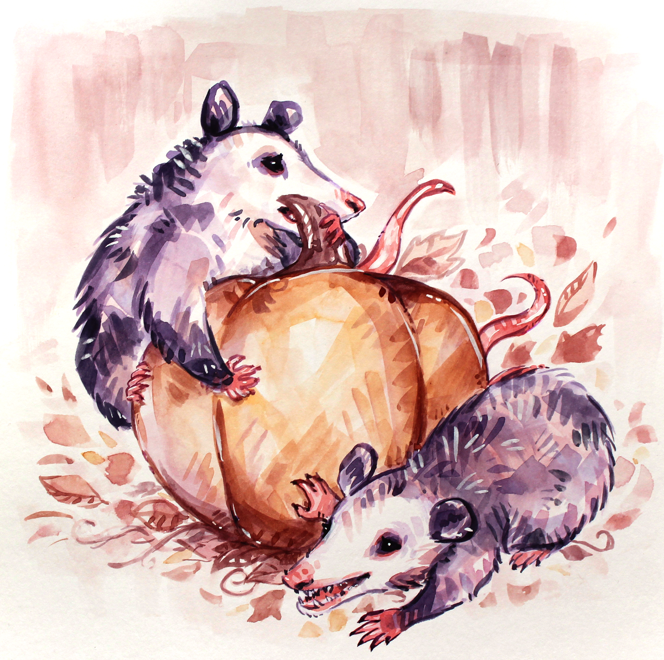 opossums on a pumpkin quirky watercolor fall painting