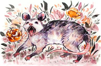 screaming opossum - inktober 2019 (2)