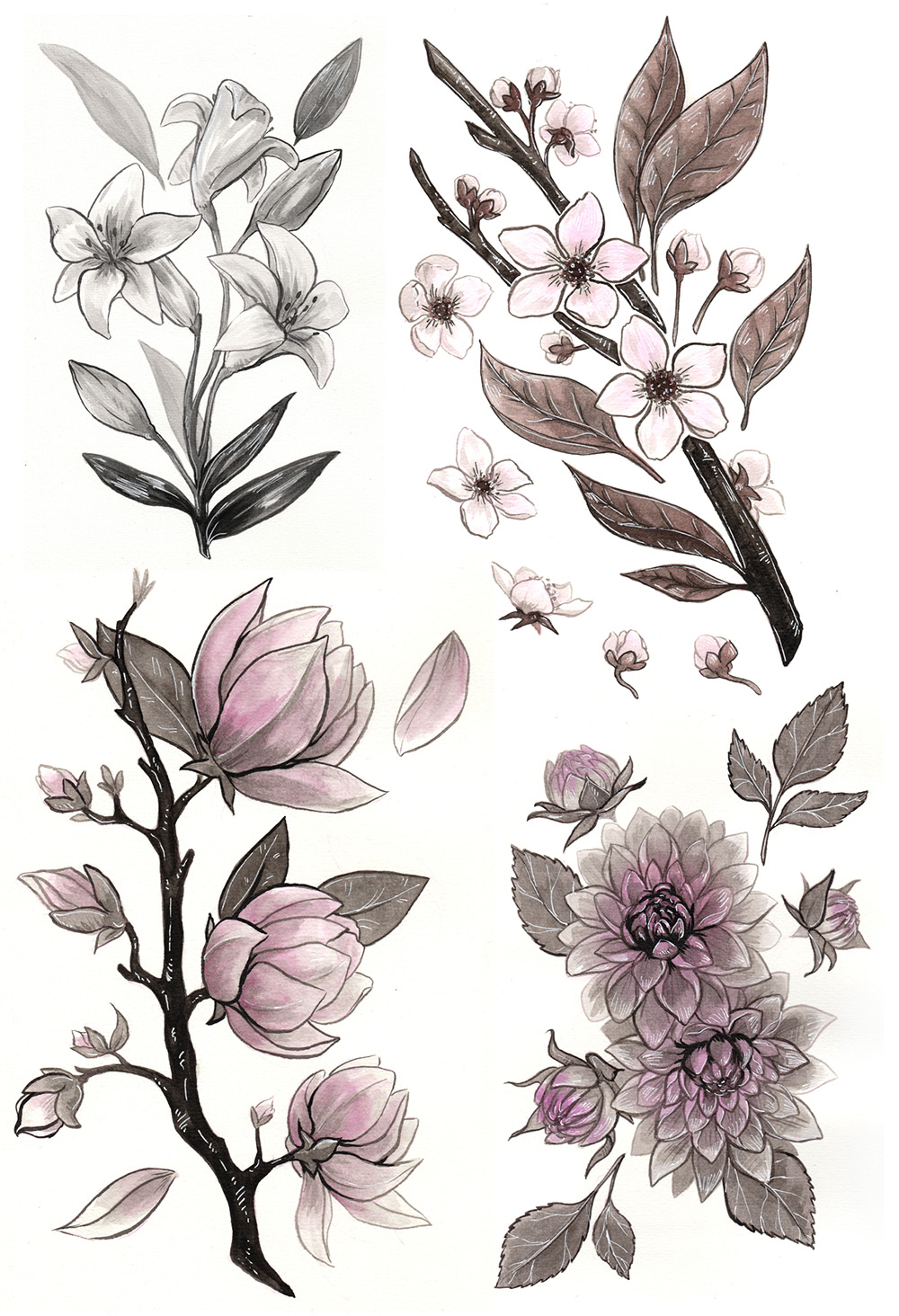 ink flower illustrations of lily, magnolia, cherry blossoms, and dahlias