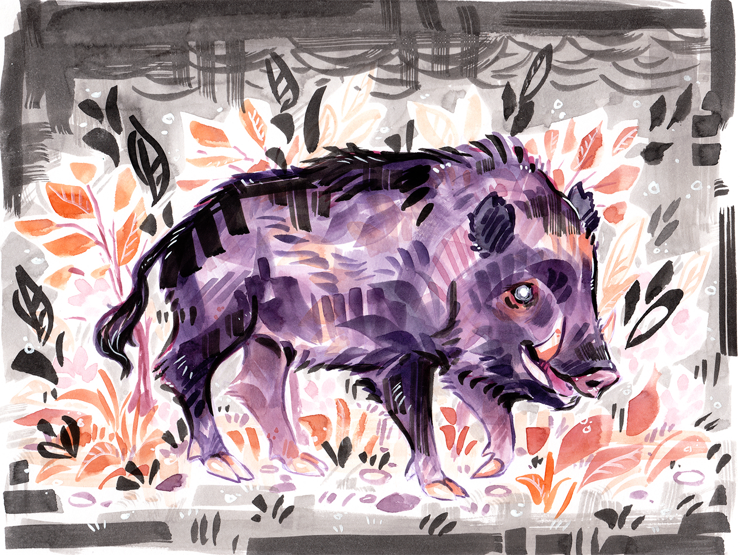 ink and watercolor floral boar illustration